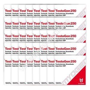 ОБЫЧНЫЙ ПАКЕТ [TestoGen 250 (тестостерон энантат) MyoGen] БЕСПЛАТНО 30 + 10