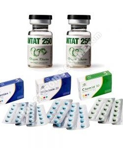 PACK MASS (INYECTO) - ENANTHATE 250 + PROTECTION + PCT (8 WEEKS)