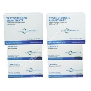 Pack taking mass (INJECT) - TESTOSTERONE ENANTHATE 250 + PROTECTION + PCT Euro Pharmacies