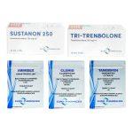STUFE I Trockenmassenpack (INJEKT) Euro-Apotheken - SUSTANON + TRI-TREN (10 Wochen)