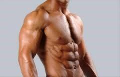 Fitness modello
