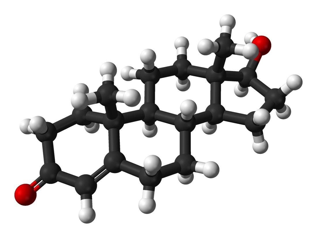 Testosterone molecola
